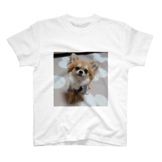 チビちゃん T-shirts