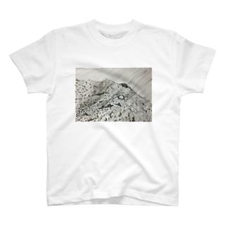 ひかりにふれる T-shirts