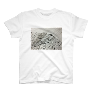 kita nobuwaのひかりにふれる T-shirts