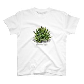 Agave Victriae Reginae T-shirts
