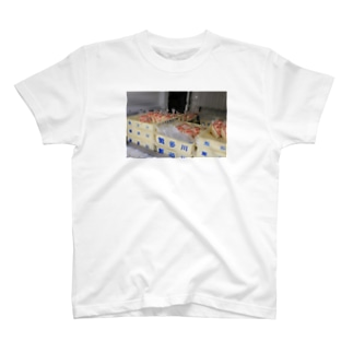Hantagawa T-shirts