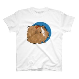 茶色のペルビアン・はんなさんブルー T-shirts