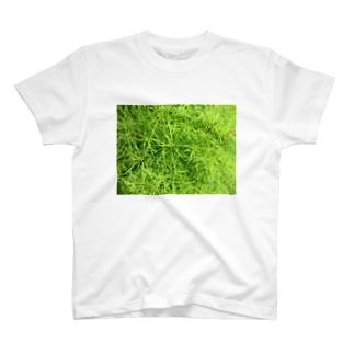 密集しているぞ~!! T-shirts