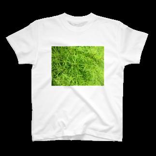 Dreamscapeの密集しているぞ~!! T-shirts