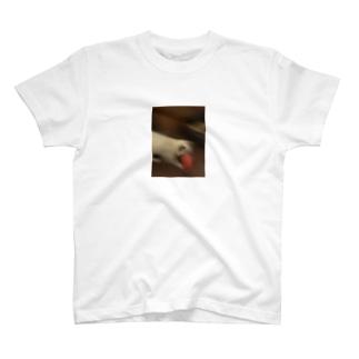 寿司を持って脱走する猫 T-shirts