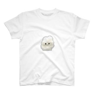 やさしい実写 Tシャツ