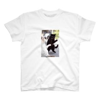 ところ狭しと T-shirts