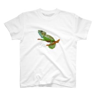 ボタンカメレオンのサンティちゃん T-Shirt