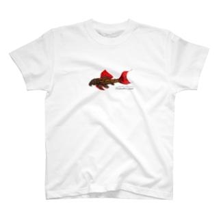 ウルトラスカーレットトリムプレコ T-Shirt