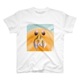 先生 北極 T-shirts