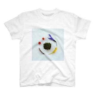 苔を中心とした花と実と枝 T-shirts
