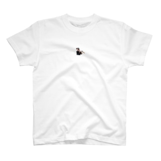 ドミンゴ T-shirts