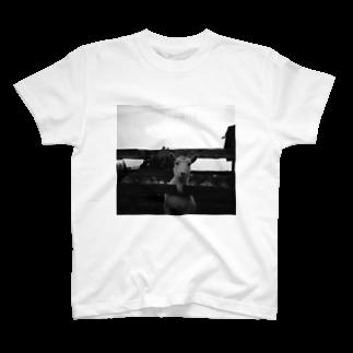 ねっころのさもありなんやぎ T-shirts