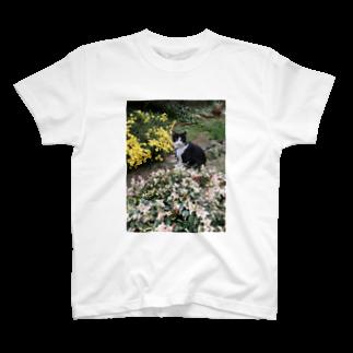 ふかみななこのうちの猫 T-shirts