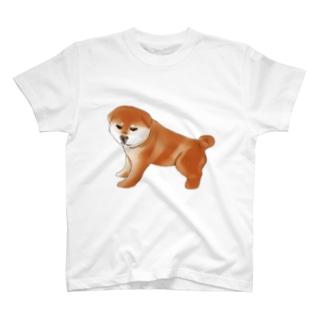 muchishiba T-shirts