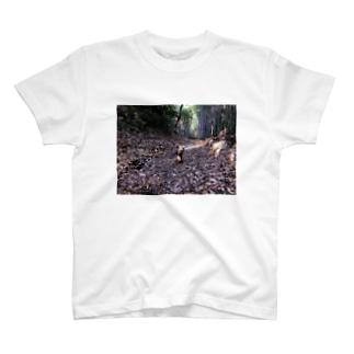 2018.11.11 おさんぽ T-shirts