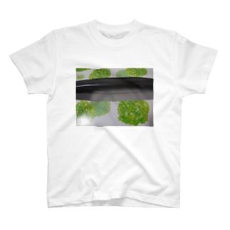 T(ティッシュ)シャツ T-shirts