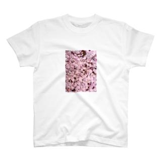 いつかの桜 T-shirts