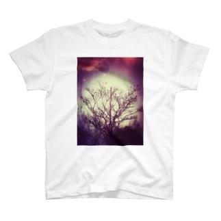 galaxy tree T-shirts