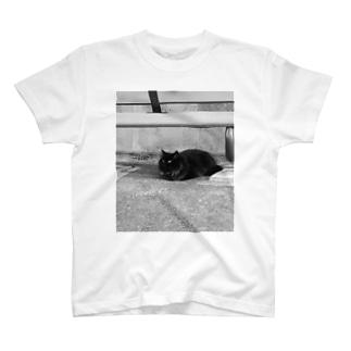 近所のくろねこ T-shirts