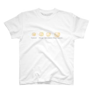 脂肪細胞分化 T-shirts