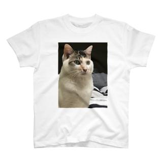 こいつはもうダメだ。。。 Tシャツ