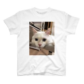 メイヨかいちょうそら T-shirts
