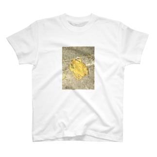 ゲコ T-shirts