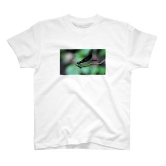 カワトンボ T-shirts