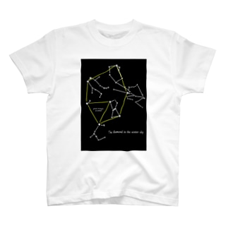 冬のダイヤモンド T-shirts
