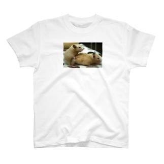 生命の源シリーズ T-shirts