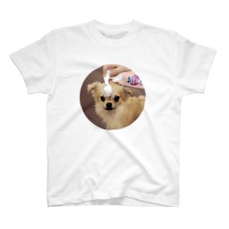 いぶちゃんTシャツ T-shirts