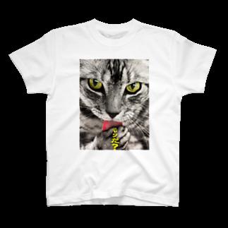 SHI-ri-ME-tsu-RE-tuのニャンだ? T-shirts