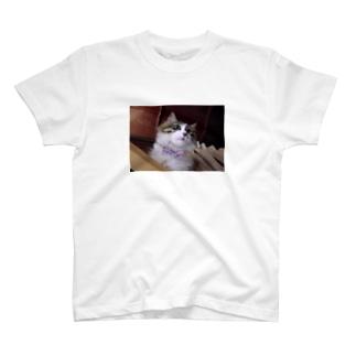 社長の蝶ネクタイ T-shirts