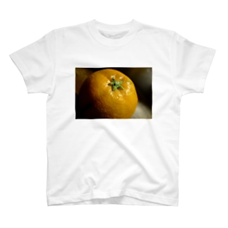 柑橘類のある光景 T-shirts