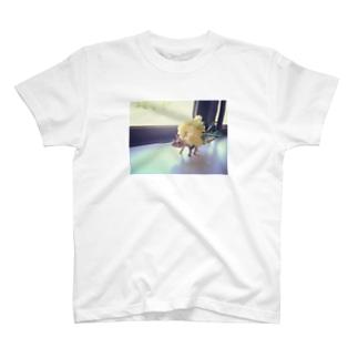 とりけらさん T-shirts