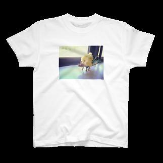nemuriのとりけらさん T-shirts
