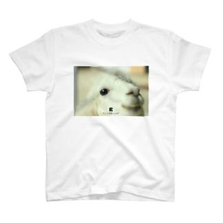 Hira Entertainment 動物プリントNo.1 T-shirts