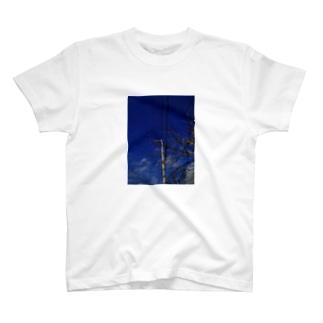 晴天 T-shirts
