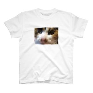 ちんぴらざくろ T-shirts