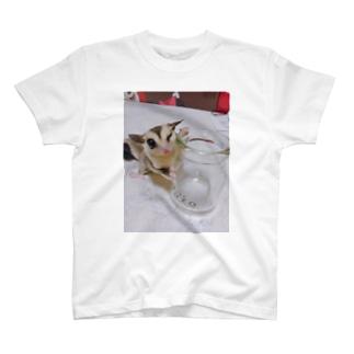 ろろろ2 T-shirts