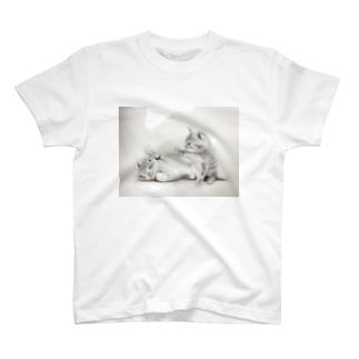 じゃれねこ T-shirts