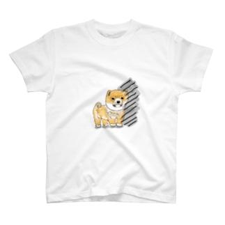 きみくん T-shirts