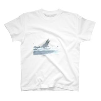 blur Tシャツ