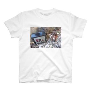 用済み T-shirts