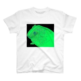 neon guinea pig T-shirts