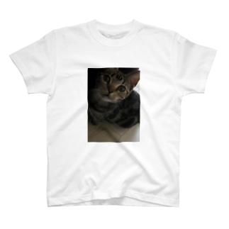 チェリ T-shirts