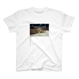 QRS-02 SEOUL 2012 T-shirts