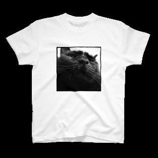 nkmap17のまたまた舞茸~おはぎじゃないよ T-shirts