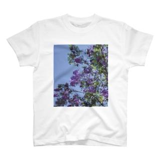 ライラック T-shirts